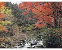 滑沢渓谷周辺の紅葉