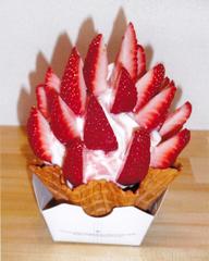 nakayasu fruit