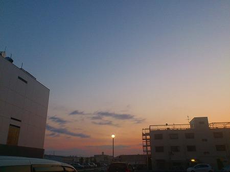 DSC_朝1430.jpg