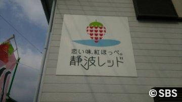 sizunami1.jpg