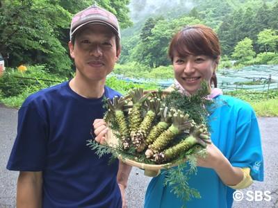 IMG_6486.jpg wasabi