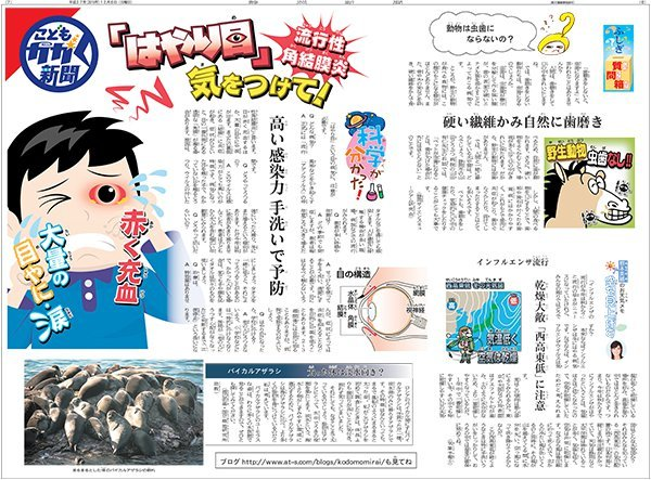 20151206kagaku.jpg