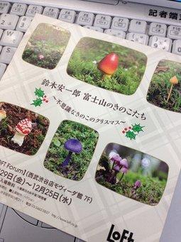 20131211webキノコ4.jpg