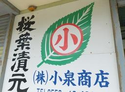 20140729web桜葉3.jpg