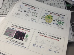 20140912webサイエンス.JPG
