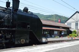 DSC_6595.JPG