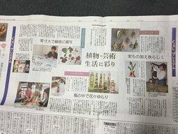 ボタニカル紙面.jpg