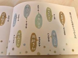 ヒコナ2.jpg