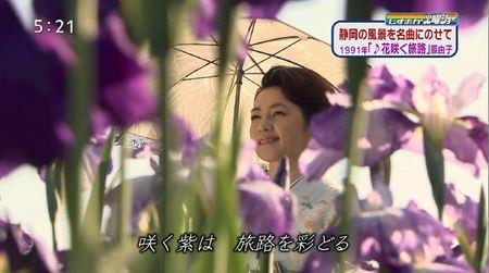加茂7~1.JPG