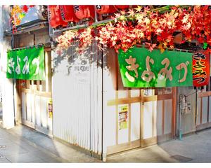 Green leaves oden street kiyomizu