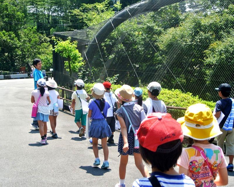 令和3年度日本平動物園サマースクール