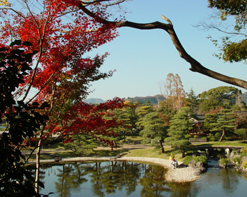 Colored leaves of Momijiyama garden