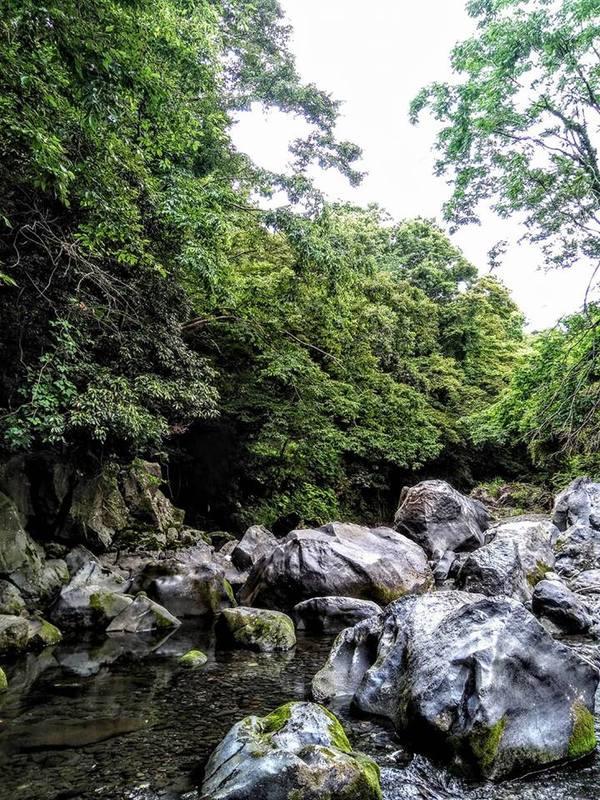 入山瀬渓谷