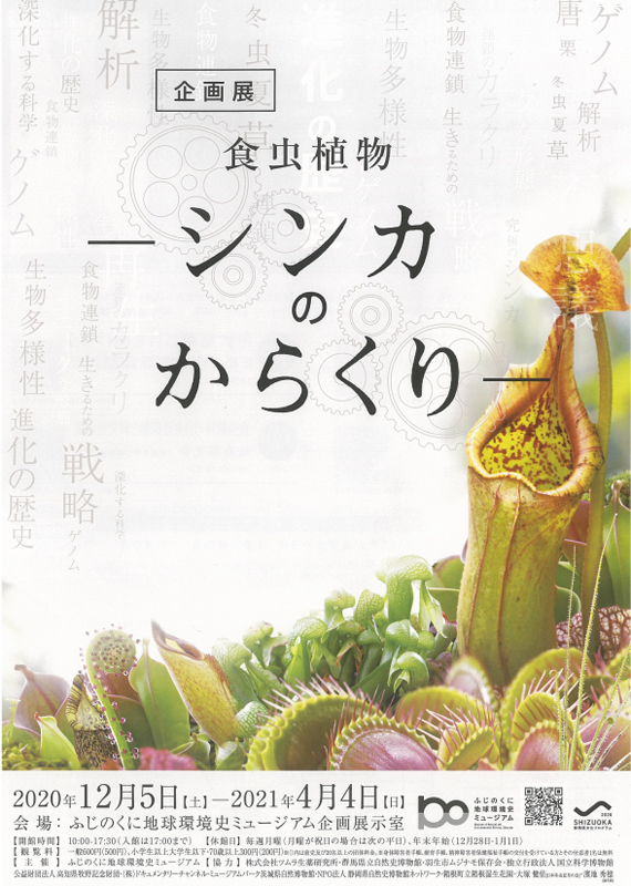 "History of fujinokuni global environment museum plan exhibition ""insectivore shinka nokarakuri"""