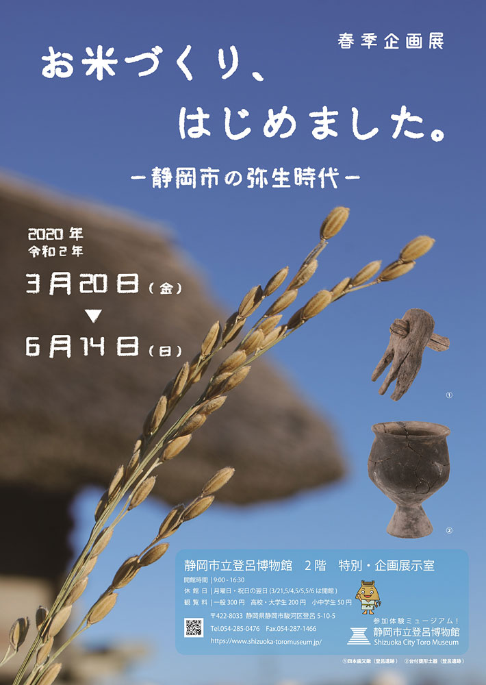 """We made rice and began Shizuoka City Toro museum spring plan exhibition. - Yayoi period - of Shizuoka-city"""