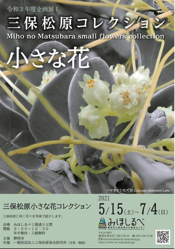 """Plan exhibition """"Miho no Matsubara small flower collection"""""""