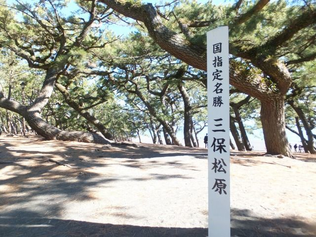 """The weekend guide walking """"robe-of-feathers-type myth and ear Shinto shrine prayer"""""""